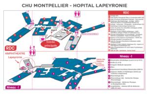 Néphropédies 2016 @ Montpellier, Hôpital Lapeyronie | Montpellier | Languedoc-Roussillon | France