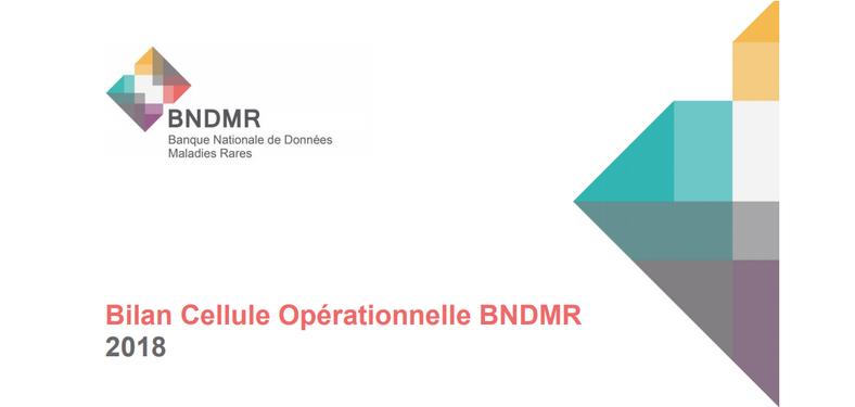 BNDMR : Rapport d'activité 2018 et orientations 2019