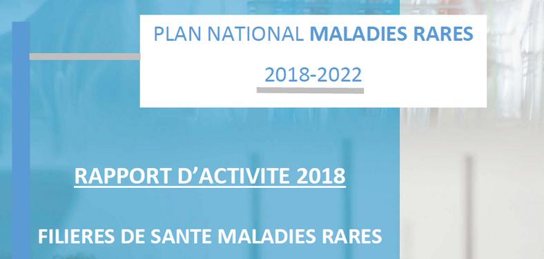 Filières de santé maladies rares : rapport d'activités 2018